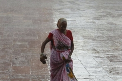 india (73 di 86)